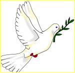 """""""Зустрінемось!"""" З війни — до миру. Фестиваль для учасників АТО"""
