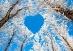 «Love Story». Романтичний фотоквест до Дня Валентина від компанії SkyPark
