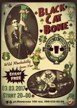 Black cat bone.Концерт у Irish pub