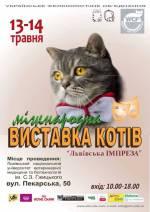 Міжнародна виставка котів