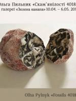 Скам`янілості 4018 - виставка Ольги Пильник
