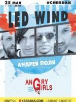 """Led Wind. Перше в Україні триб'ют-шоу The Doors"""""""