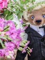 Тедді-пікнік - Чаювання ведмедиків у саду