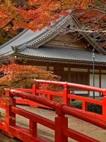 Travel club meetup. Про Японію з Милославою Черній