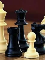 Шаховий турнір у Козі