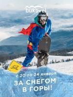 Тур в Буковель «За снегом в горы»