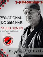Міжнародний Айкідо семінар у Кропивницькому