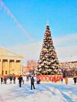 Відкриття новорічної ялинки 2019 у Тернополі