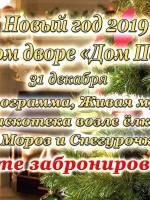 Новый год 2019 в «Доме Павловых»