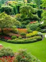 Курсы «Декоративное Садоводство»