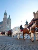 Каникулы в Кракове
