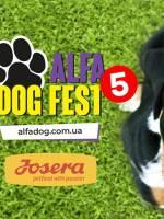 AlfaDogFest 2019 - Свято для собак та їхніх власників