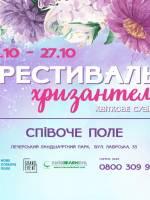 Квіткове сузір'я - Фестиваль хризантем на Співочому полі