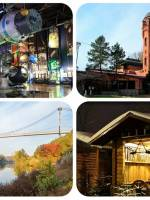 Поїздка в Житомир з «Globe Language»