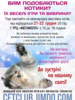 Міжнародна виставка котів ♦ Розіграш квитків