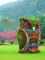 Виставка-конкурс «Квіткові композиції»
