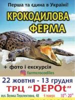 Крокодилова ферма у Кропивницькому