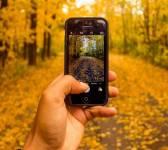 Що варто зробити восени: ТОП-5 яскравих ідей
